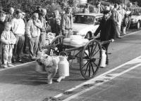 Nieuwehorne Flayelfeest 1990 hondenkar